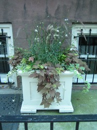Brownstone_arrangement