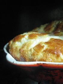 Eggbabies1