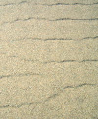 Portland_beach_sept_05_sand_pattern