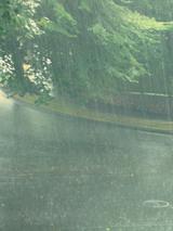 Portland_rain_aug_05