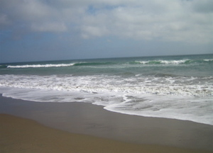 Pt_reyes_beach_with_mama_and_millie_2